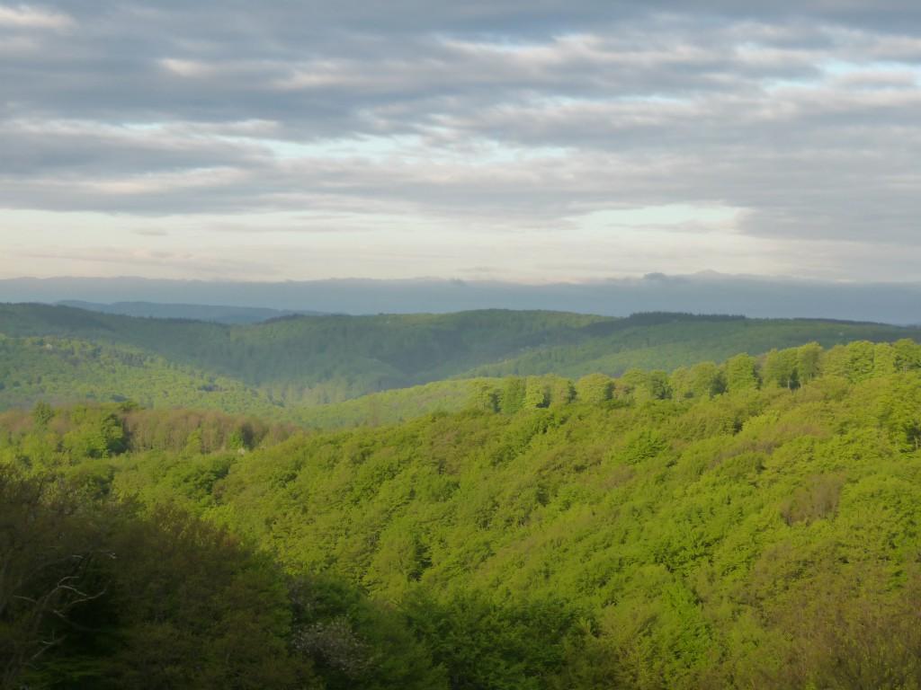 Blick in Eifel